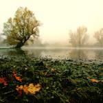 Igor_Petaros_SLO_Lake
