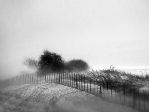 FIAP SILVER_Anica_Zupunski_RS_The fog_web