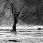 FIAP HM-Sand-storm-in-Deadvlei-Nevenka-Papic,-Slovenia