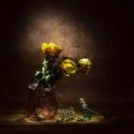 rose-gialle-secche-5_Donatella-Tandelli,-Italy